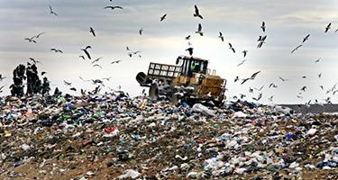 Методы и правила утилизации отходов