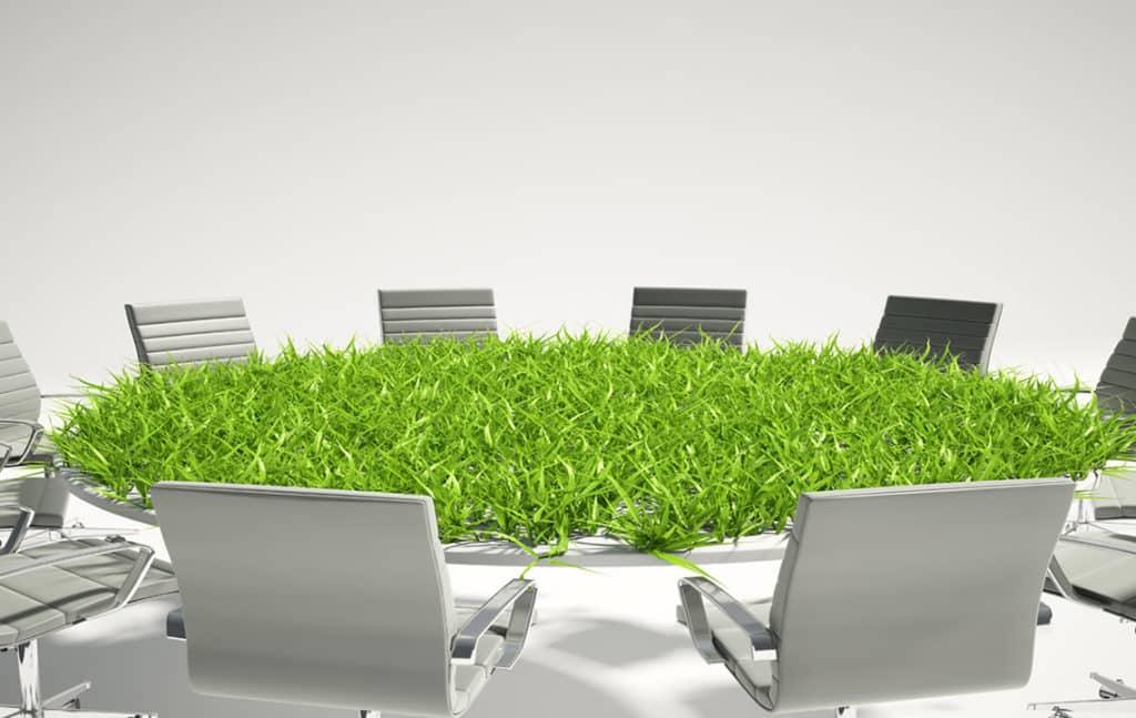 Трава на столе совещаний